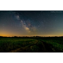 Moonlit Dirt Road - Canvas